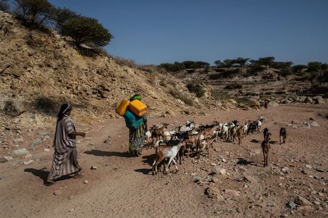 Humanitarian Aid: additional €50 million to tackle drought ...