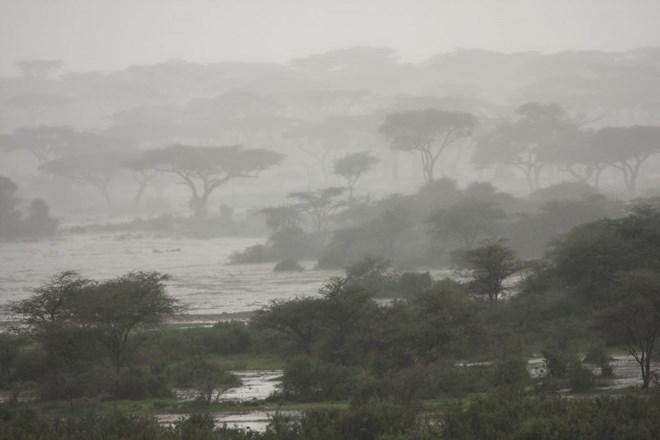 Heavy rains and fierce winds hit Puntland, cut off transport as cyclone PAWAN makes landfall
