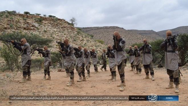 Islamic State in Somalia suffers setbacks despite uptick in claimed activity