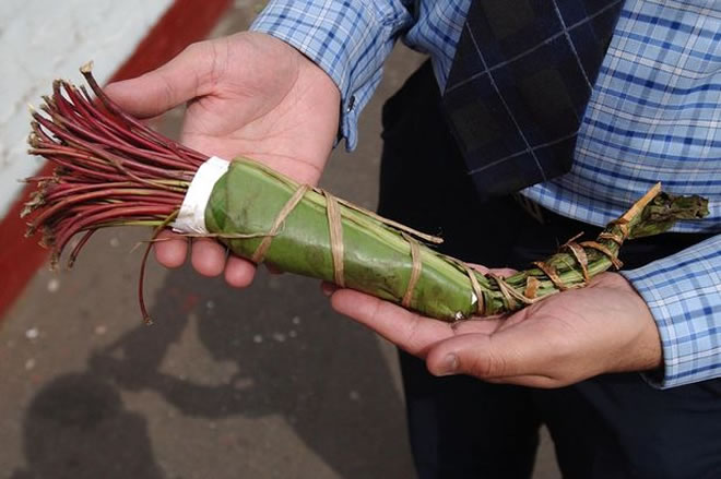Khat ban: just two fines issued in Hounslow in first three