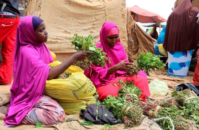 Somalis in the United Kingdom