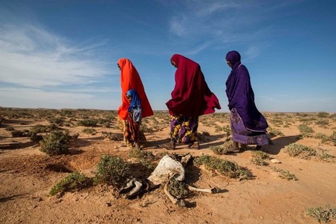 2017166361926820289151912017 01 05 1483636278 7580559 Somalia3 thumb Drought Is Forcing Somali Families To Split Up Just To Survive