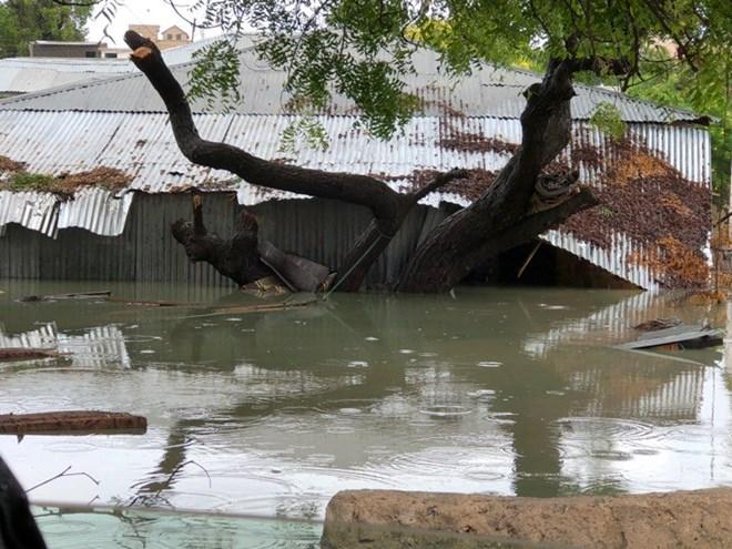 Somali Education Ministry calls off Sunday's National exams following heavy rains