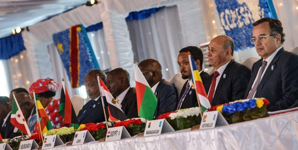 Delegates from the 19 member countries that make up the Common Market for Eastern and Southern Africa attend a summit on February 26, 2014, in Kinshasa. PHOTO | FILE | AFP