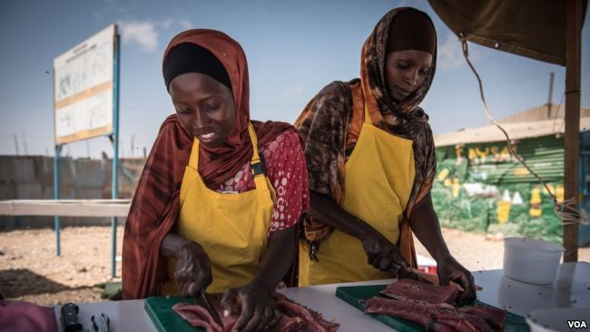 Women slice fresh fish in thin strips to dry for eventual sale as part of a Food and Agriculture Organization program to boost Somalia's fishing industry, in late March 2018. (J. Patinkin/VOA)