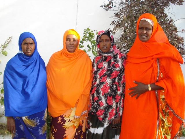 Gabdho Somali Lawasayo